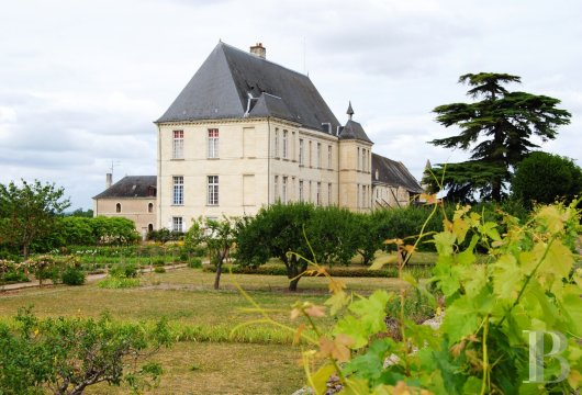 castles for sale France center val de loire   - 26