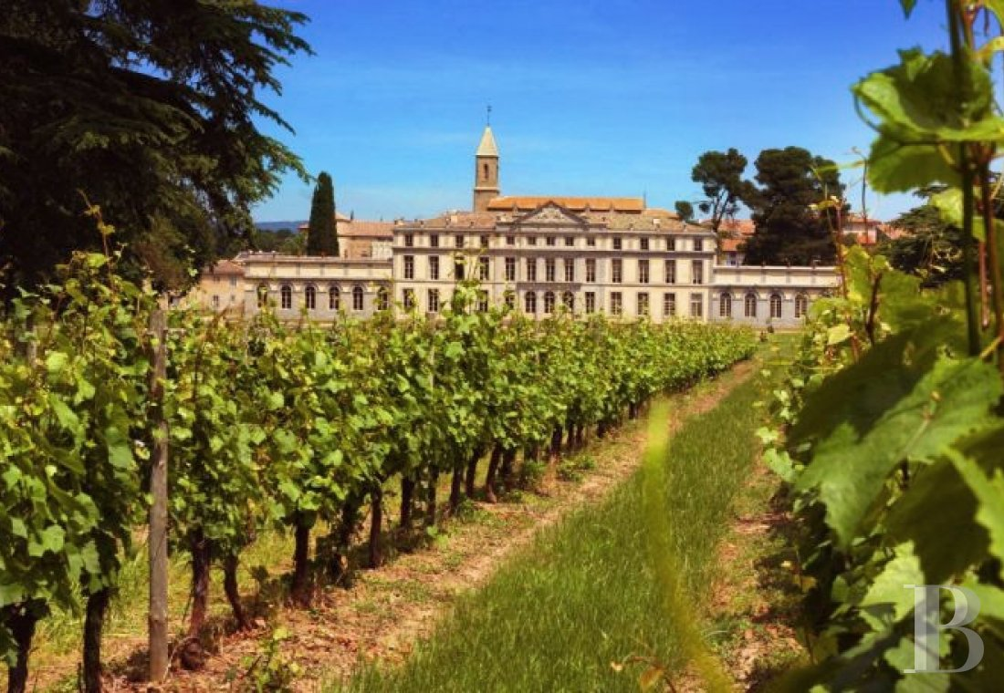 A Historic Monument and large vineyard open for tours and overnight stays just outside of Carcassonne, the Cité and the Canal du Midi - photo  n°34