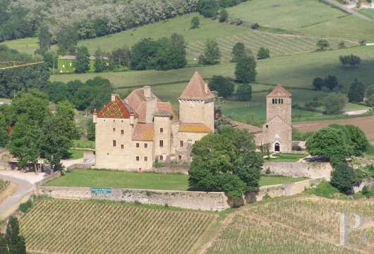 fAn ancient 'château-fort' reigning over gardens and vineyards in Burgundy, not far from Mâcon - photo  n°5