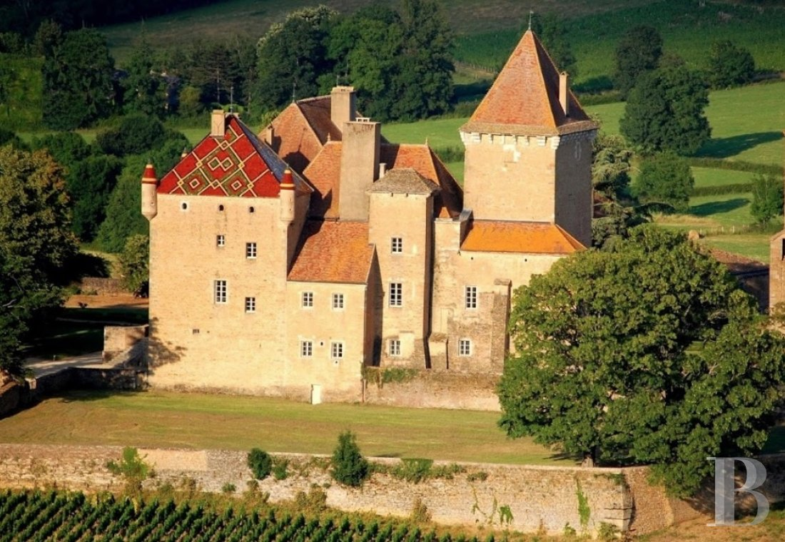 fAn ancient 'château-fort' reigning over gardens and vineyards in Burgundy, not far from Mâcon - photo  n°1