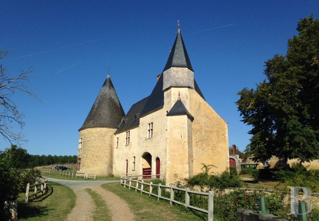 fA family chateau classified as a historic monument on a 400-hectare estate between Le Mans and Ferté-Bernard - photo n°8