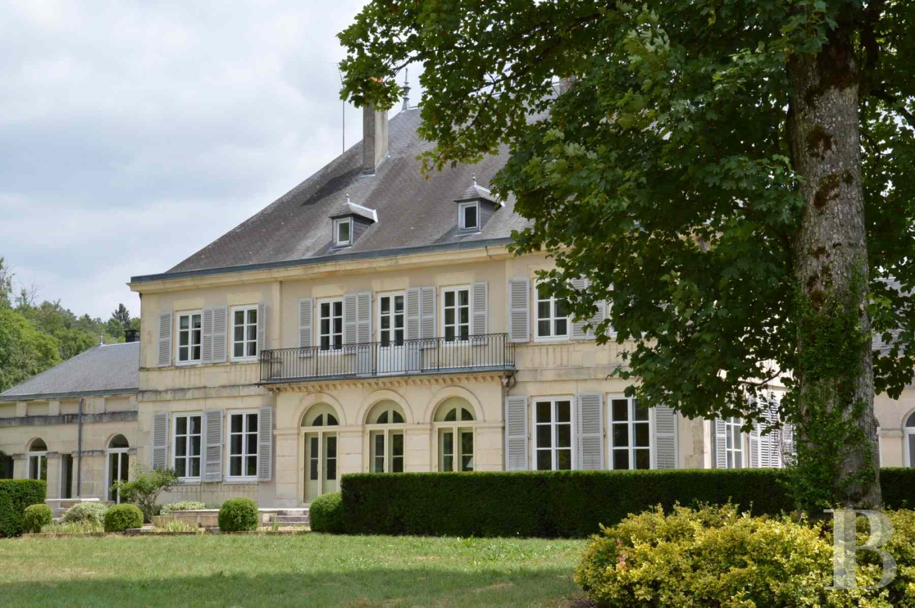chateaux for sale France champagne ardennes residence 19th - 1 zoom