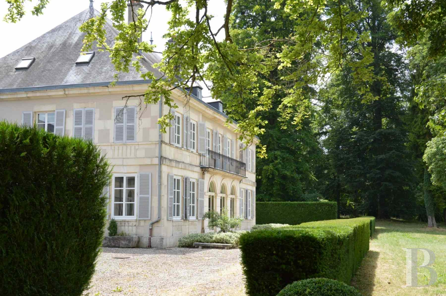 chateaux for sale France champagne ardennes residence 19th - 3 zoom