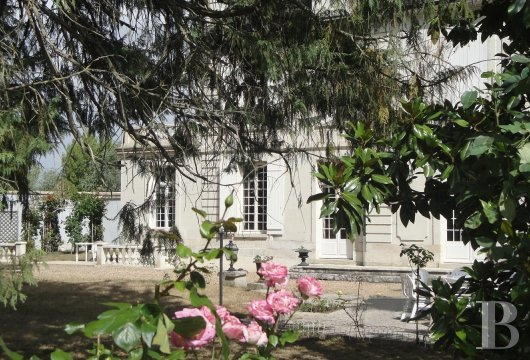 property for sale France center val de loire large luxurious - 3 mini