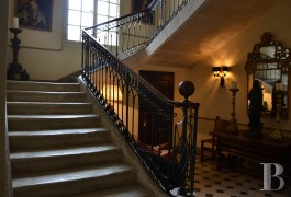 chateaux for sale France languedoc roussillon parc village - 8