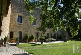 chateaux for sale France languedoc roussillon parc village - 2