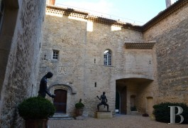 chateaux for sale France languedoc roussillon parc village - 4