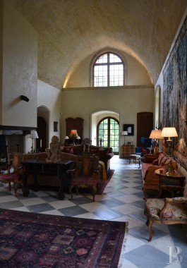 chateaux for sale France languedoc roussillon parc village - 9