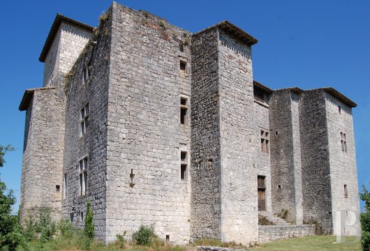 Historic buildings for sale - midi-pyrenees - In Gascony,-Listed village castle set in 3 ha (7.4 acres)