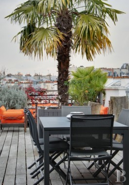 appartments for sale paris two storey - 10