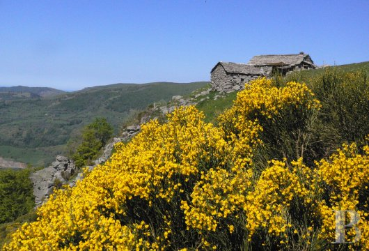 A buron transformed into a cottage surrounded by nature in the Auvergne Volcanoes Nature Reserve - photo N°16