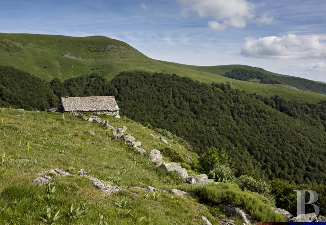 A buron transformed into a cottage surrounded by nature in the Auvergne Volcanoes Nature Reserve - photo N°3