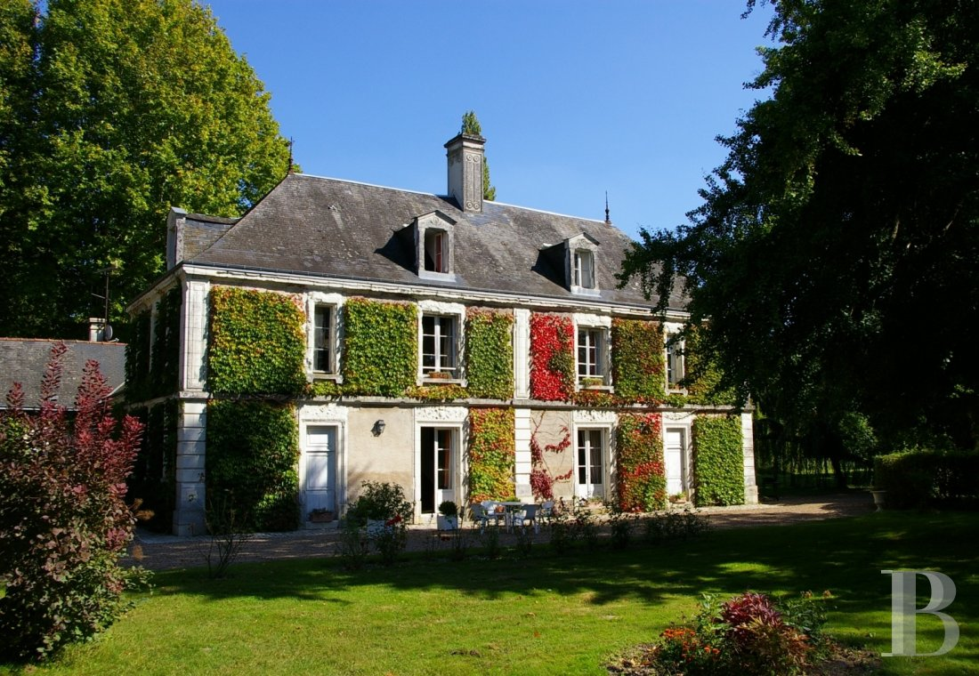 property for sale France center val de loire chenonceau guesthouse - 1 mini