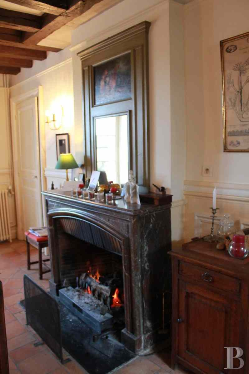 property for sale France center val de loire chenonceau guesthouse - 5 zoom