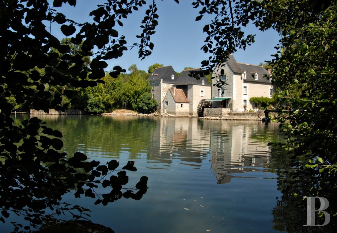 mills for sale France center val de loire riverside parkland - 1