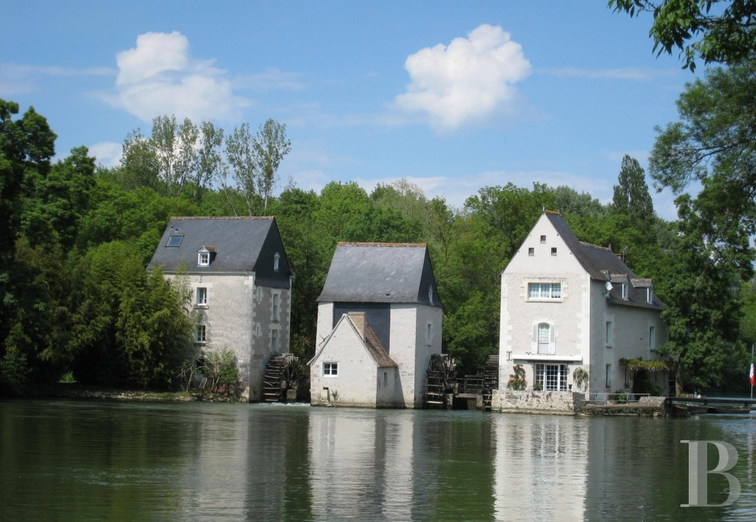 mills for sale France center val de loire riverside parkland - 4
