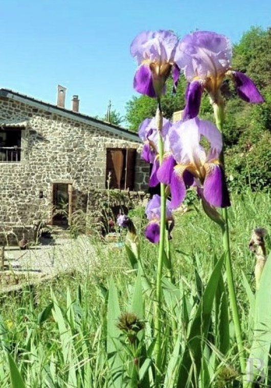 fAn old fortified farmhouse surrounded by nature in the Ardèche mountains natural park  - photo N°5