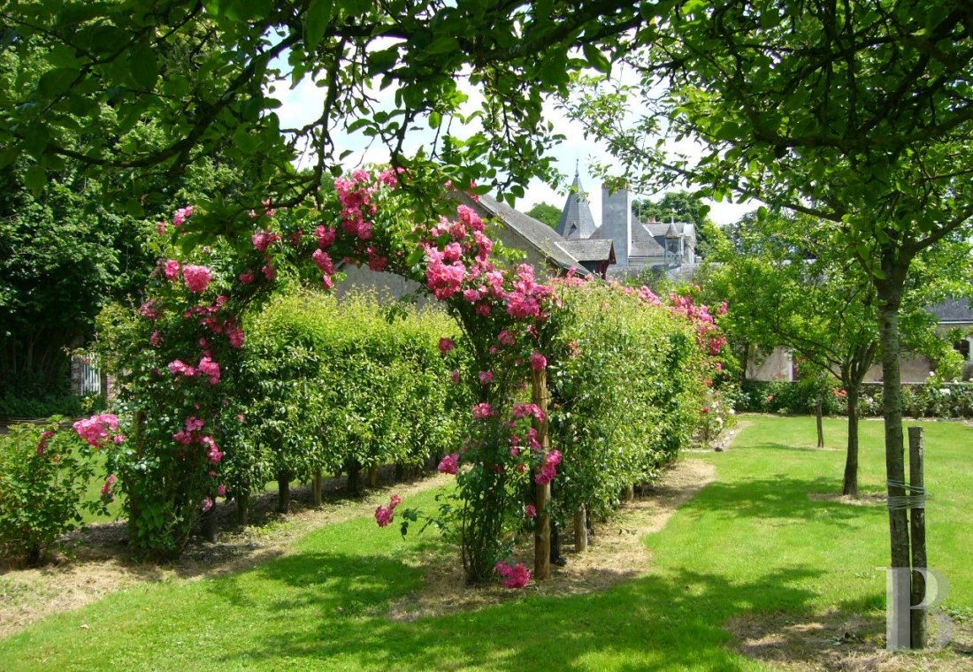fA house full of spirit with a courtyard and garden  between Anjou bleu and Mayenne  - photo N°12