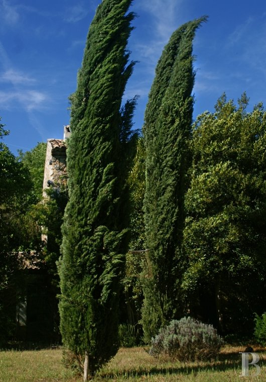 mansion houses for sale France provence cote dazur   - 15