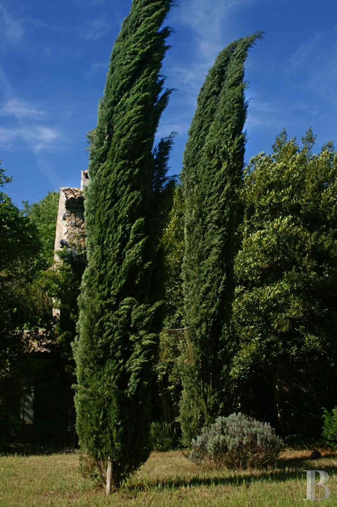 mansion houses for sale France provence cote dazur 3936  - 15 zoom