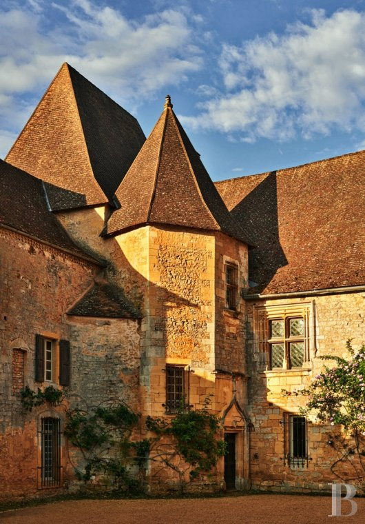 A family chateau not far from the meanders of the Dordogne,  between Bergerac and Sarlat  - photo  n°12
