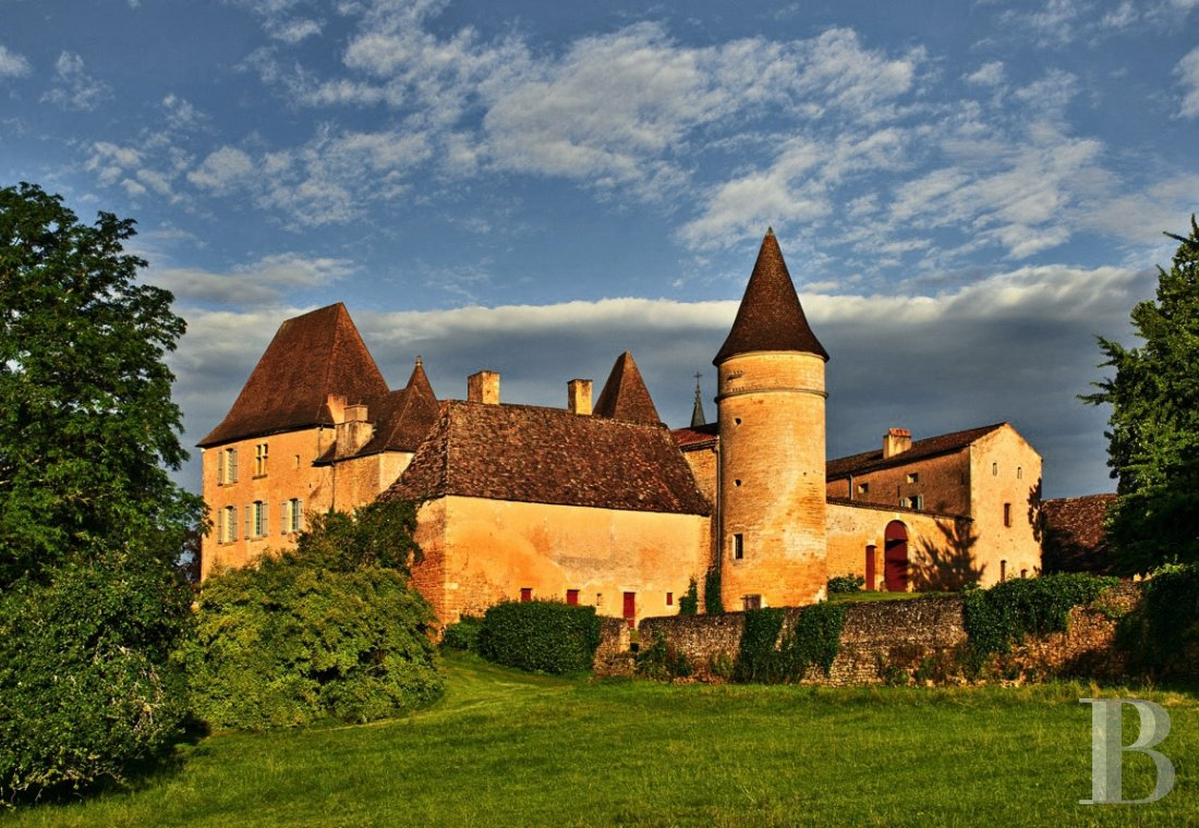 A family chateau not far from the meanders of the Dordogne,  between Bergerac and Sarlat  - photo  n°5