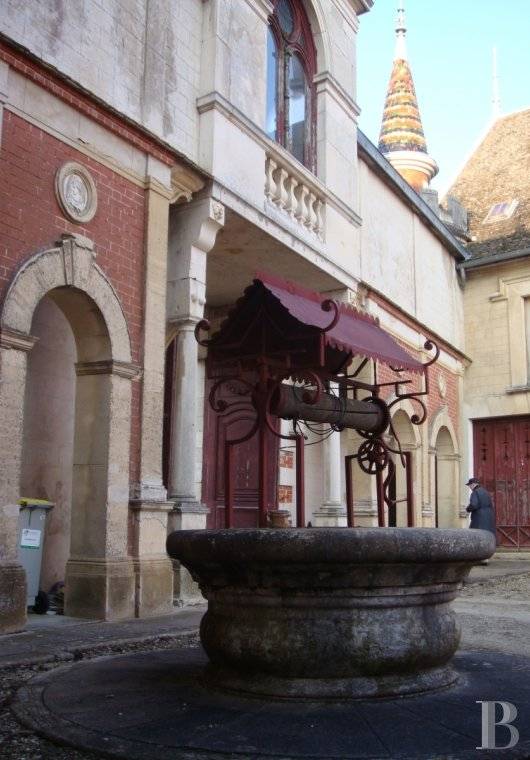 chateaux for sale France burgundy beaune property - 25