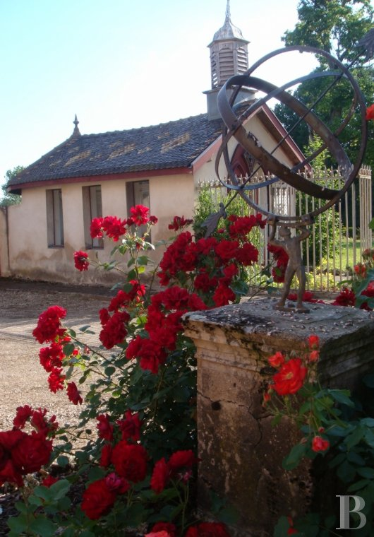 chateaux for sale France burgundy beaune property - 26