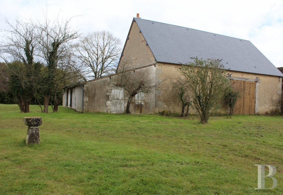 castles for sale France center val de loire old listed - 8