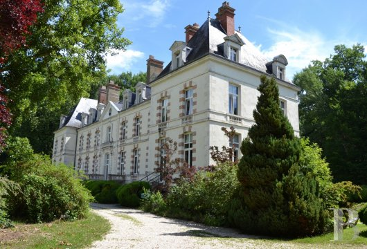 chateaux for sale France burgundy 18th century - 2