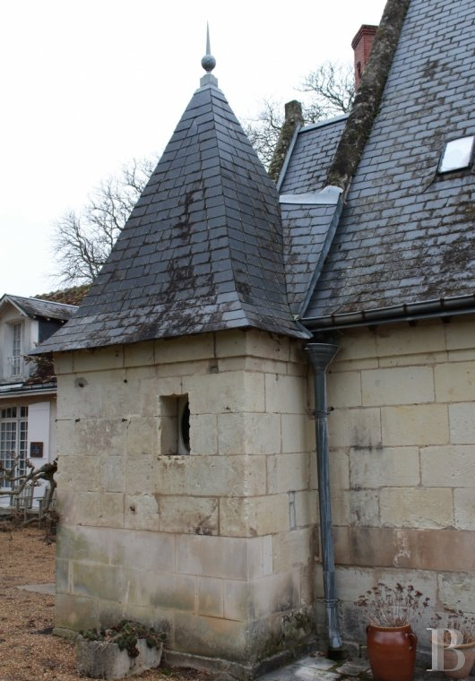 chateaux for sale France center val de loire chenonceau renaissance - 12 mini