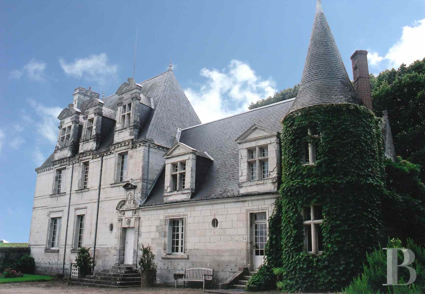 chateaux for sale France center val de loire chenonceau renaissance - 1 zoom