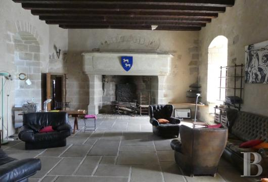 chateaux for sale France limousin   - 8