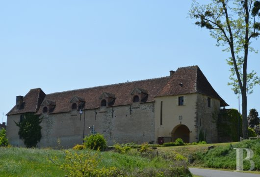 chateaux for sale France auvergne   - 4