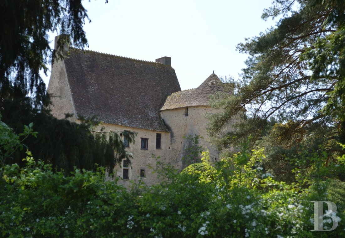 chateaux for sale France auvergne   - 1