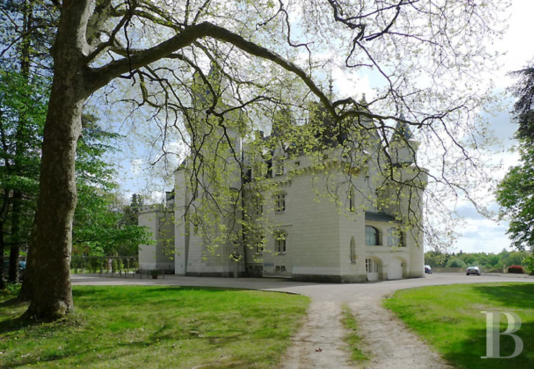 chateaux for sale France poitou charentes parkland renaissance - 2 mini