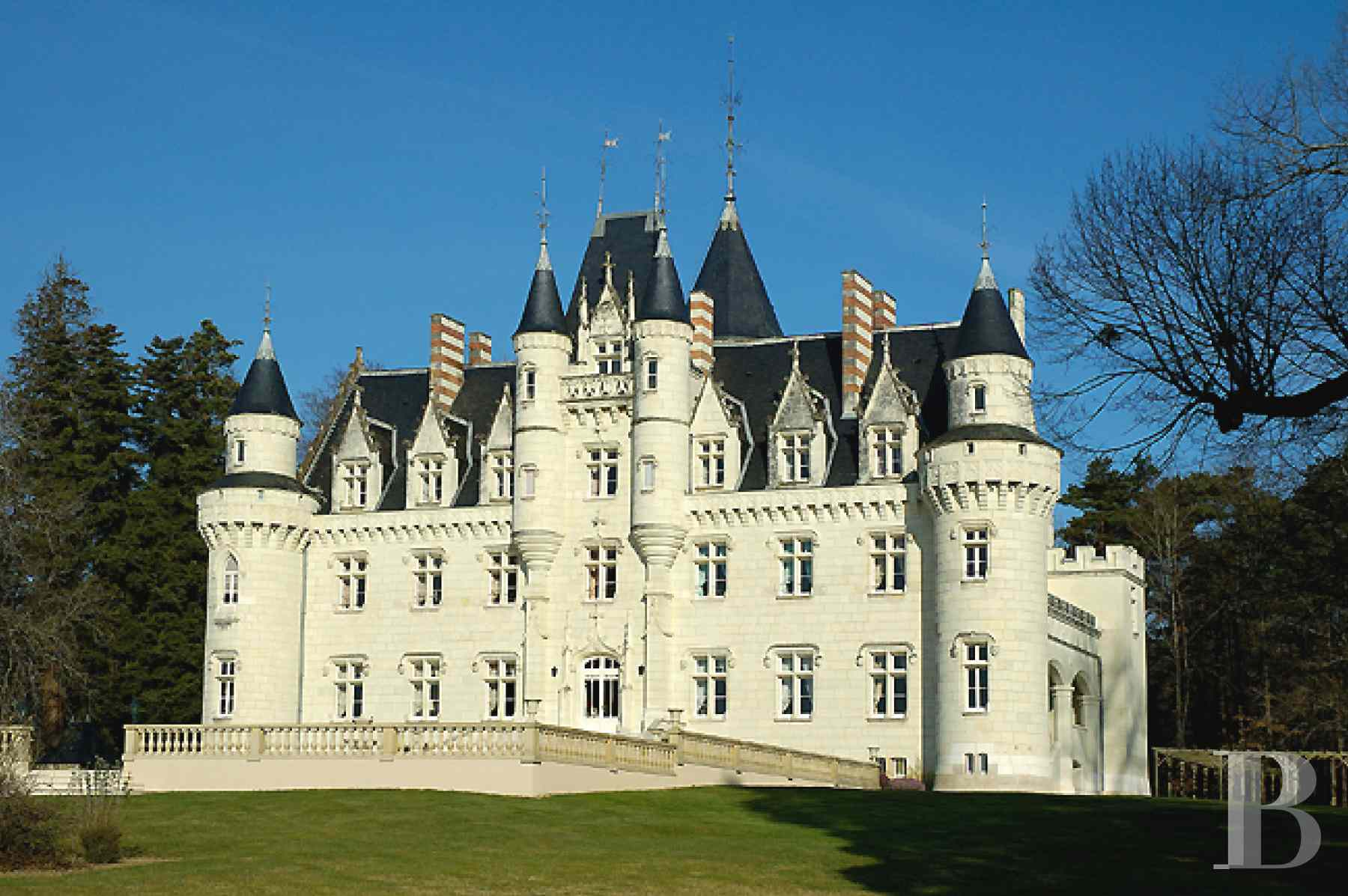 chateaux for sale France poitou charentes parkland renaissance - 7 zoom