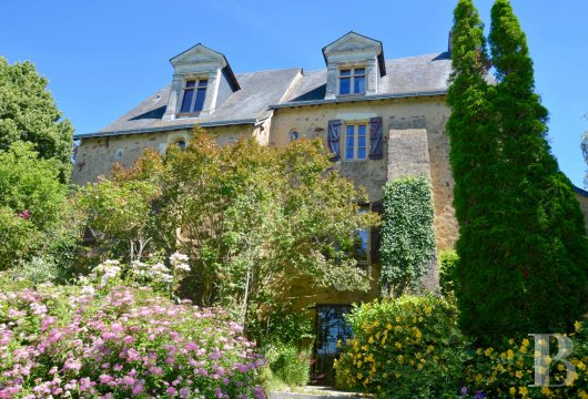 France mansions for sale pays de loire 19th century - 2