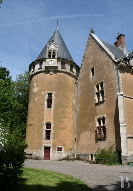 chateaux for sale France burgundy   - 3
