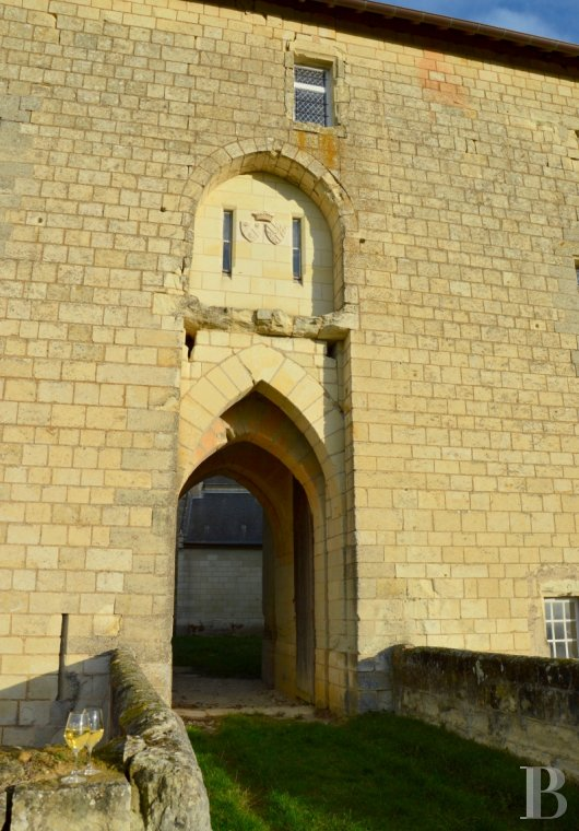 chateaux for sale France poitou charentes 12th century - 6