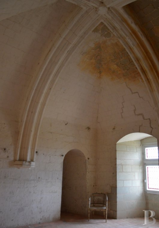 chateaux for sale France poitou charentes 12th century - 9