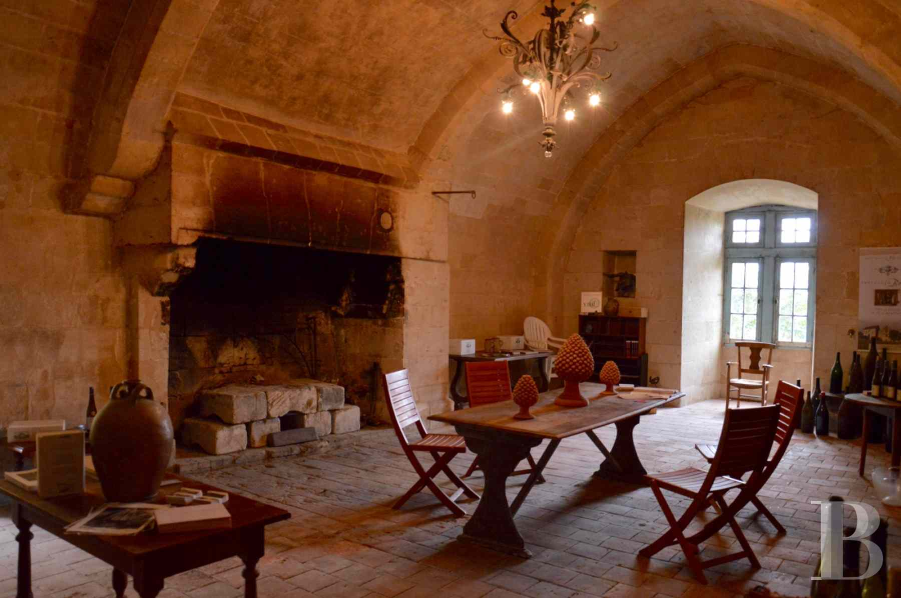 chateaux for sale France poitou charentes 12th century - 12 zoom