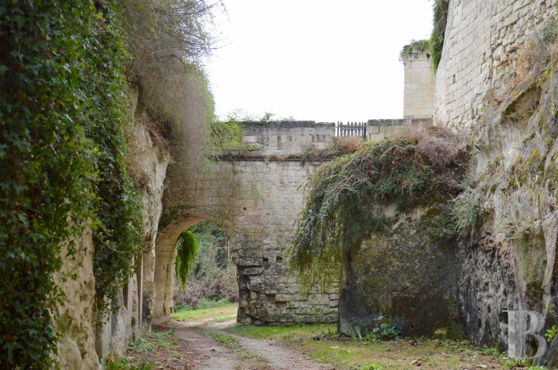 chateaux for sale France poitou charentes 12th century - 17 zoom