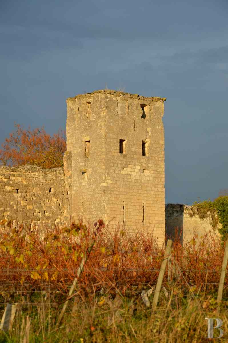 chateaux for sale France poitou charentes 12th century - 3 zoom