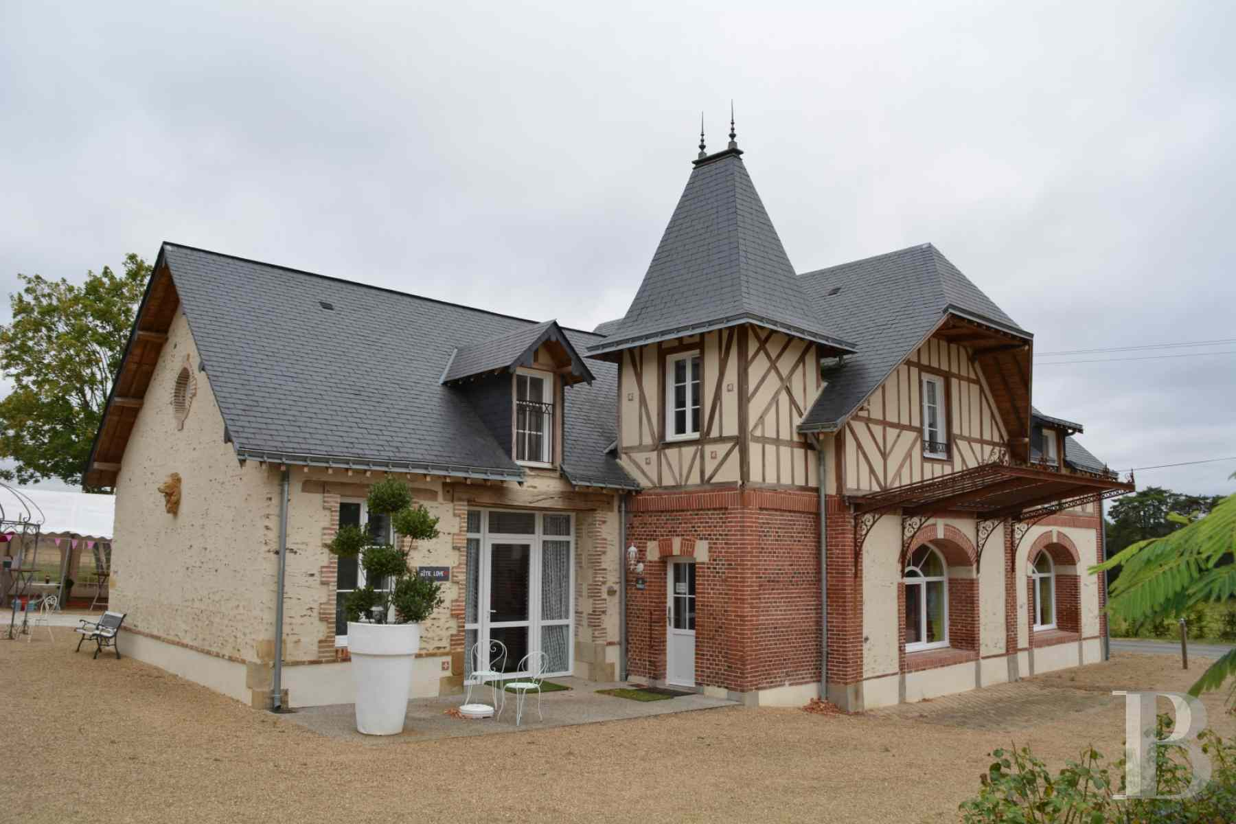 chateaux for sale France pays de loire 19th century - 9 zoom