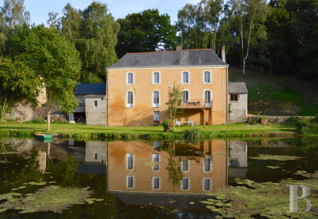 Character houses for sale - pays-de-loire - In a superb area of natural beauty in Haut Anjou,  house and watermill with grounds of one hectare.