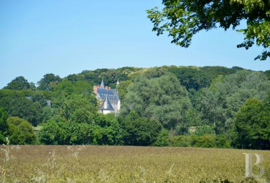 chateaux for sale France pays de loire   - 4