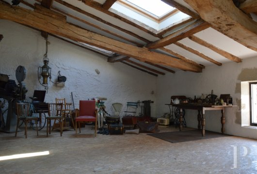mansion houses for sale France aquitaine bordeaux region - 8