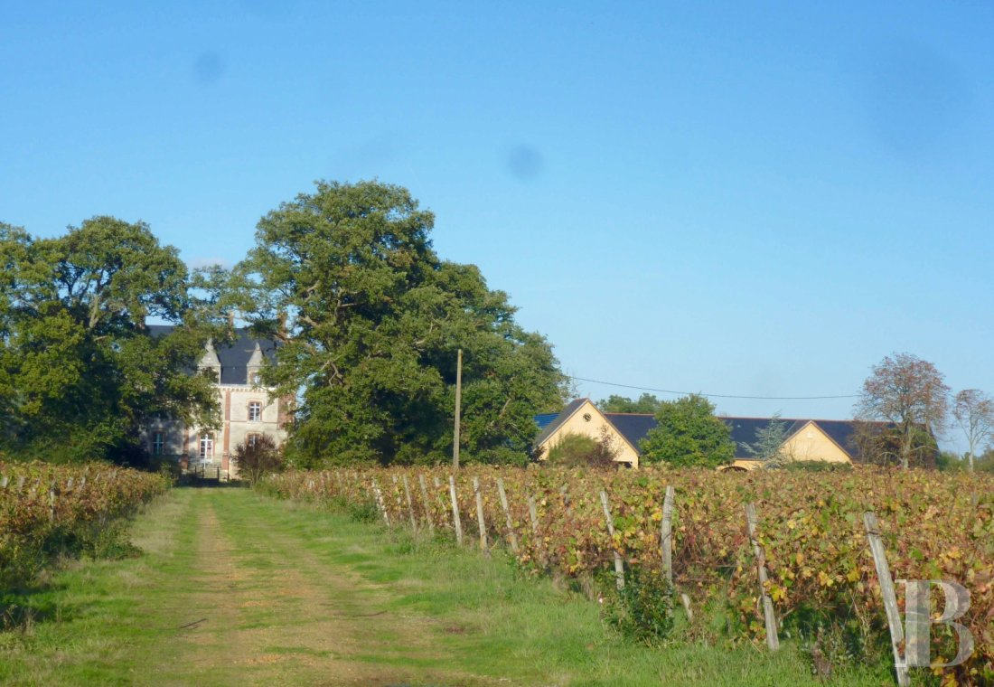 chateaux for sale France pays de loire manor house - 20