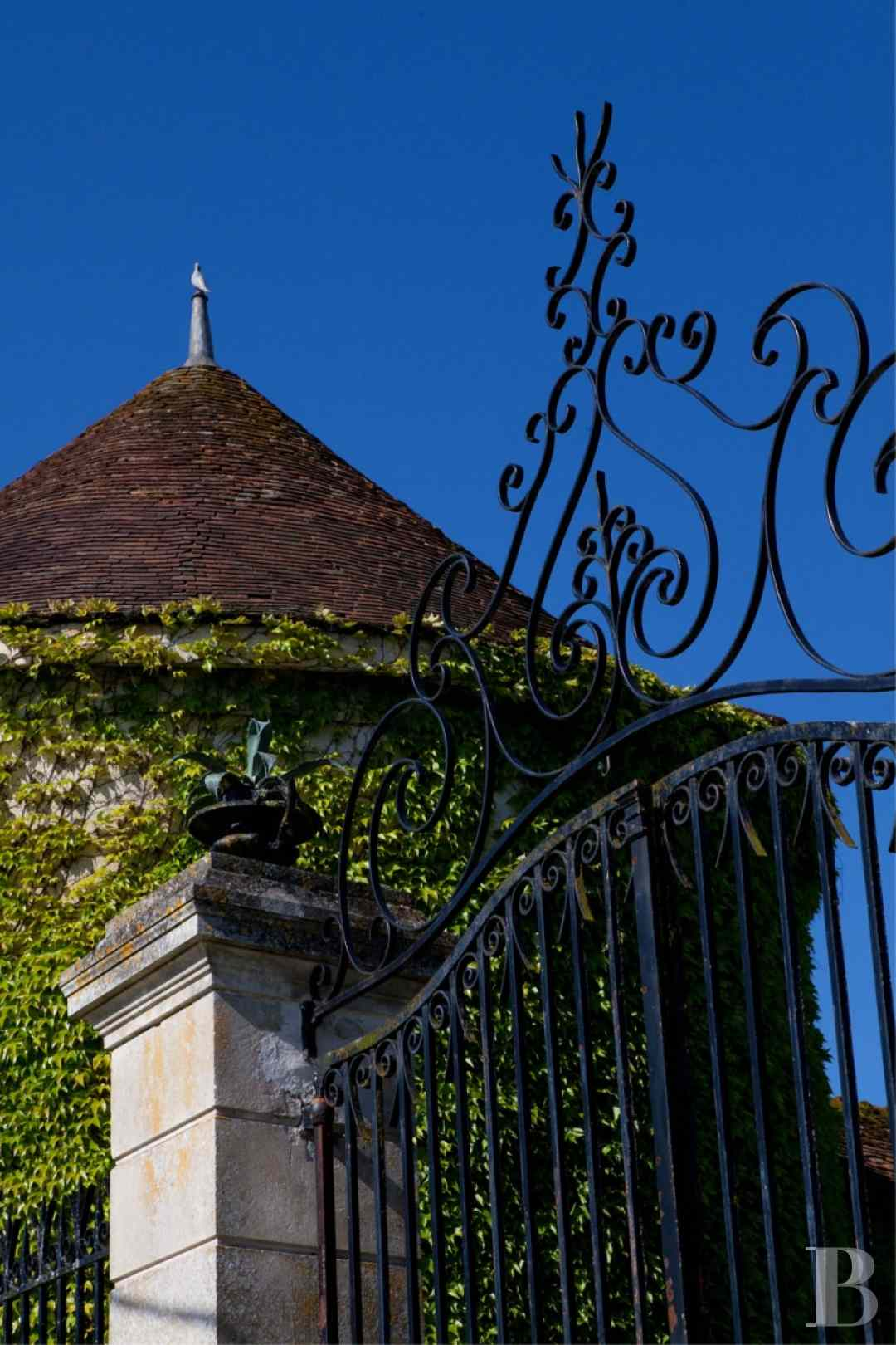 chateaux for sale France burgundy 3782  - 22 zoom